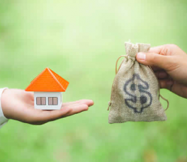 Learn about some home loans that may be right for you.